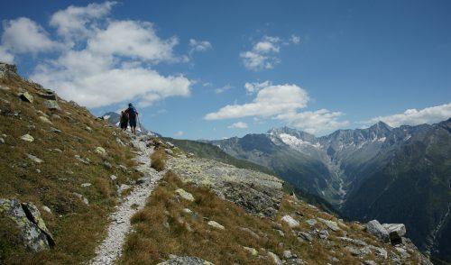 Artikelbild zu Artikel Artikel zum Tauernhöhenweg von Peter Angermann