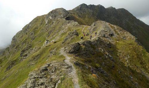 Artikelbild zu Artikel Gemeinschaftstour Karnischer Höhenweg